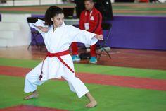 El karate do entrará en acción este fin de semana | El Puntero