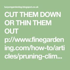 CUT THEM DOWN OR THIN THEM OUT p://www.finegardening.com/how-to/articles/pruning-climbing-roses.aspx CUTTING BACK A S EVERELY C ...