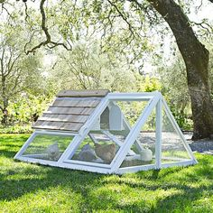 Chicken Chores Explore Self-Sustained Living|  A-Frame Chicken Coop #williamssonoma | Serafini Amelia
