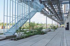 Strijp_S-Carve-01_marleen-beek « Landscape Architecture Works | Landezine