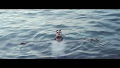Directed by specialproblems.com , taken from the forthcoming debut album by The Naked And Famous.