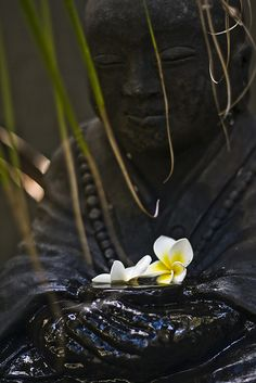 """""""Be master of mind rather than mastered by mind.""""  - Zen Proverb"""