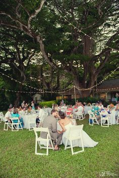 10 Best Kualoa Ranch Wedding At Paliku Gardens Images Photography