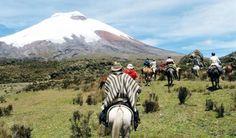 Entérate porqué los viajes a caballo por Ecuador están tomando vuelo. Una…