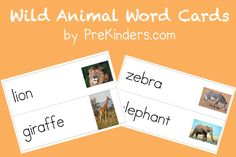 Wild Animal Word Cards - PreKinders from website http://www.prekinders.com/wild-animal-word-cards/