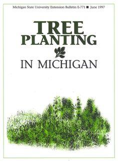 Tree Planting in Michigan