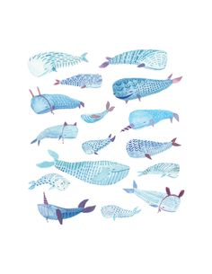 Whale Party | illustration print by miroosa | watercolor gouache painting studies of whales and their interesting behavior | exploration of color and pattern folk inspired decorative art