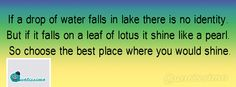 if a drop of water falls in lake there is no identity. but if it falls on a leaf of lotus it shine like a pearl. so choose the best place where you would shine. Cover Pics, English Quotes, Lotus, The Good Place, Identity, Waterfall, Lily, Pearl, Drop