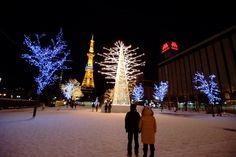 Sapporo White illumination 30th