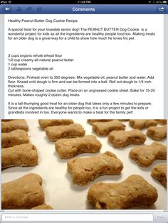 Pet Treats - Homemade! EASY