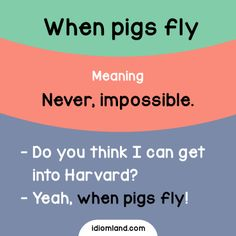 Have you ever seen a flying pig? #idioms #english #learnenglish