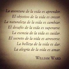 la aventura de la Vida es aprender, crecer, vivir, sentir, http://blog.elsamejiagomez.com/