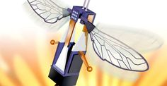 The National Science Foundation is involved in designing RoboBees -- See the video