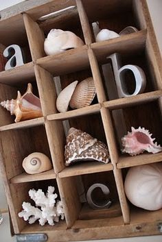 an old soda crate to create a vertical shadowbox display for your seashells and sealife.Use an old soda crate to create a vertical shadowbox display for your seashells and sealife. Seashell Crafts, Beach Crafts, Diy Crafts, Deco Marine, Deco Nature, Beach Room, Beach Bath, Home And Deco, Beach House Decor