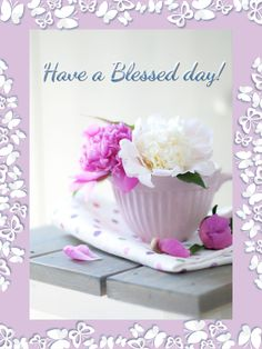 Bless You❤️ Good afternoon Gracious Ladies!  Sending wishes for a Lovely day filled with the Love and Peace of Our Heavenly Father!  Enjoy, LY.