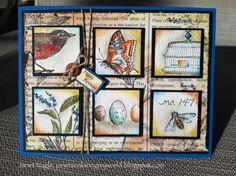 Nature Walk Birthday Card