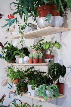 Lost in Plantation: Mama Petula – Happy Interior Blog