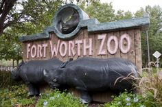 How to plan a perfect day at the Fort Worth Zoo