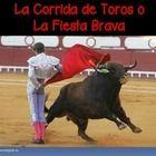La corrida de toros / The Bullfight (IB/AP/Honors Spanish) I created this 20 slide presentation to introduce the students to th...