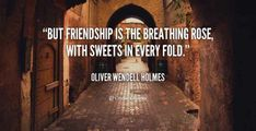 105 Best Friends Quotes About Life Love Happiness And Inspirational Motivation 96