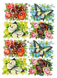 Butterflies and Flowers German Scrap Paper Pictures 4 Designs PZB 1352 Die Cut, Vintage Butterfly, Beautiful Butterflies, Collage Sheet, Vintage Paper, Vintage Images, Paper Art, Decoupage, Nostalgia