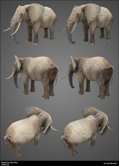 African Elephant, texture mapping over polygon, sculpted form Elephant Images, Elephant Art, African Elephant, Elephant Sculpture, Lion Sculpture, Elephant Anatomy, Elephant Template, Elephant Sketch, Anatomy Sculpture