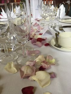 mauve, red and cream rose petals September Wedding Flowers, Seasonal Flowers, Cream Roses, Rose Petals, Fine Dining, Mauve, Seasons, Table Decorations, Create