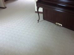 Pattern cut loop cut carpet cincinnati by Bliss by Beaulieu installed in Liberty Township 45044. Living and dining room.
