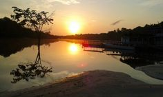 O amanhecer na selva amazônica.