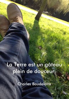 #pixword,#quotes.#citation,#douceur,#baudelaire