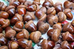 Bake in the oven for 2-3 hours at 200°F. Check them every hour or so and give them a little shake to prevent burning on the pan. Let the acorns completely cool before you touch them.