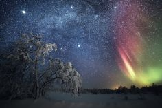 Starry memories ... Karigasniemi, Northern Lapland, Finland | by Tiina Törmänen Photography
