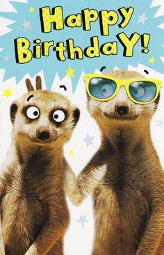 Narodeniny - Happy Birthday Funny - Funny Birthday meme - - Narodeniny The post Narodeniny appeared first on Gag Dad. Birthday Wishes Funny, Birthday Blessings, Happy Birthday Funny, Happy Birthday Messages, Happy Birthday Quotes, Happy Birthday Greetings, Funny Happy Birthday Pictures, Funny Friend Pictures, Animal Birthday