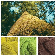 Lux Adorna Knits DK in Spring, Mrs. Smith, and Fudge.