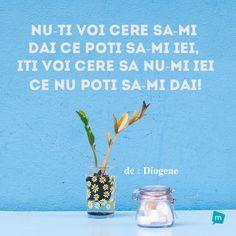 Motto, Glass Vase, Facebook, Twitter, Life, Instagram, Style, Swag, Stylus