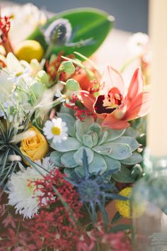 This lovely mix of colors and shapes reminds us that spring is really here!
