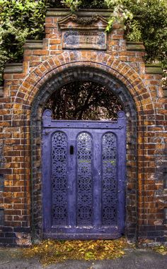 Door in Dublin, Ireland. Perfect entrance to a garden. Cool Doors, Unique Doors, Portal, Purple Door, Blue Doors, When One Door Closes, Grades, Door Gate, Grand Entrance