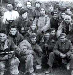 Division Azul. Batalla de Krasny Bor.