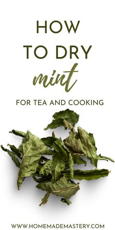 How to dry mint for tea and cooking! Drying your own mint leaves in the oven, or airdrying is easy and will provide you with high-quality dried mint leaves! Herb Drying Racks, Drying Herbs, Drying Mint Leaves, Peppermint Leaves, Mint Tea, Detox Recipes, Mint Recipes, Food Items, Green Beans