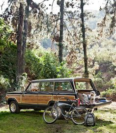1987 Jeep Wagoneer is my dream car!  well at least my dream lake car..  Just like paw paw Charlie's!