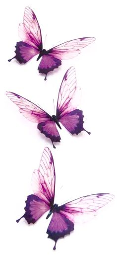 这幅照片很好的体现了水彩的魅力,有边界,有浓淡,有细线,有染色。 Butterfly Drawing, Butterfly Wallpaper, Body Art Tattoos, Sleeve Tattoos, Cute Wallpapers, Wallpaper Backgrounds, Motifs Animal, Foto Baby, All Things Purple