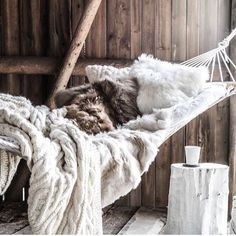 I would probably spend my entire day in this. Looks so cozy.  #cozy #warm #hammocklife #hammock #hammockliving #fur #fauxfur #pillows #blankets #crochetblanket #furblanket #cuddleweather #cuddletime #cuddle #cuddleseason #logcabin #instamood #trending #vacation #chill #relaxation #alldaylong #christmastime #christmas by @thecourtneyraley