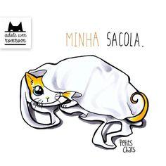 Livro ilustrado mostra como é a vida a partir da visão dos gatos | Catraca Livre