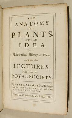 Anatomia Animata: Plant Anatomy > Grew