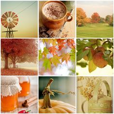 Autumn comes softly | 1. A contraption of sorts, 2. hot coco… | Flickr - Photo Sharing!