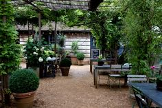 Petersham nursery Rustic charm