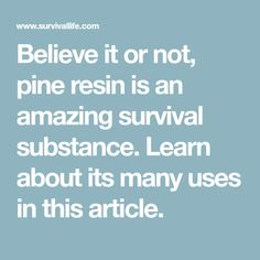 Believe it or not, pine resin is an amazing survival substance. Learn about its many uses in this article.