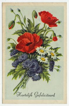 Postcards - Greetings & Congrads #  630 - Happy Birthday with Daisys