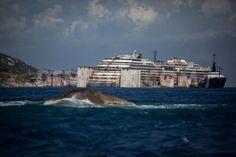 costa concordia genoa arrival | Refloated Costa Concordia | Demotix.com