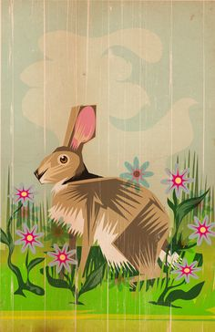 Rabbit In Daisies